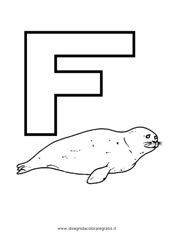 alfabeto/lettere/alfabeto_foca.JPG