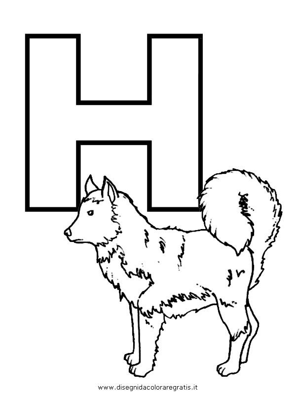 alfabeto/lettere/alfabeto_husky.JPG