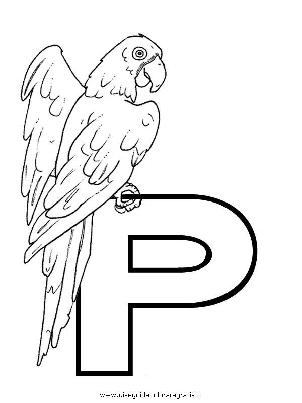 alfabeto/lettere/alfabeto_pappagallo.JPG