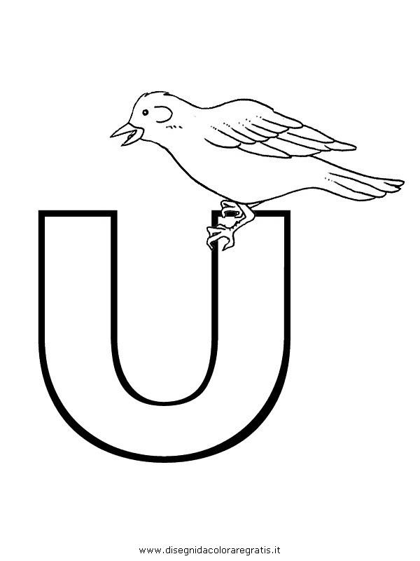 alfabeto/lettere/alfabeto_usignolo.JPG