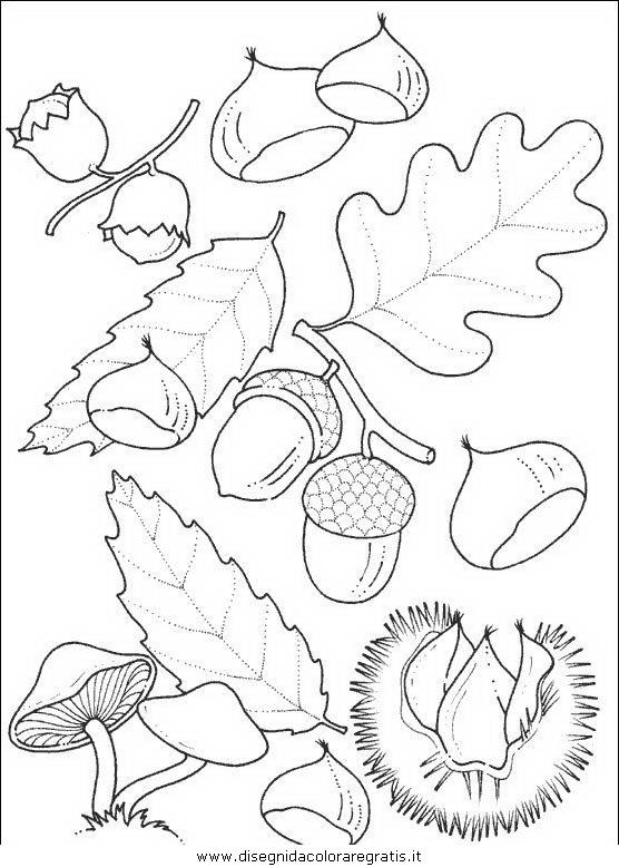 Disegno Castagne Funghi Alimenti Da Colorare
