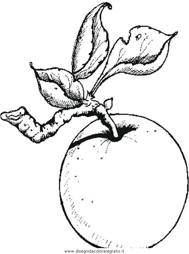 alimenti/frutta/mela_mele0.JPG