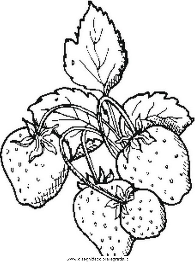 alimenti/frutta/strawberries_fragole.JPG