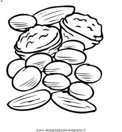 alimenti/fruttainvernale/noce_noci_02.JPG