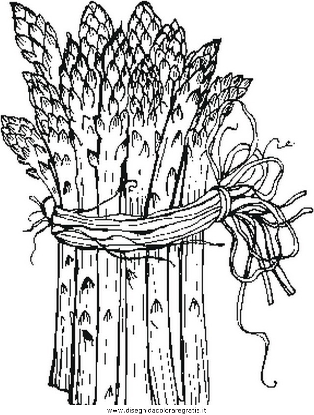 alimenti/verdura/asparagi.JPG
