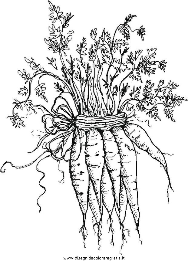alimenti/verdura/carote_b.JPG