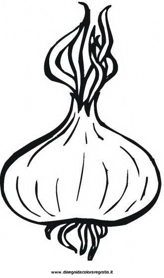 Disegno cipolla cipolle alimenti da colorare for Salvia da colorare