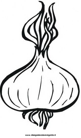 alimenti/verdura/cipolla.JPG