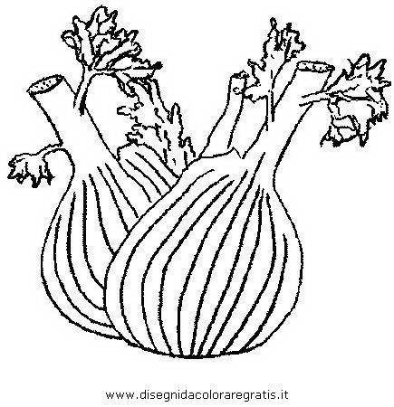 alimenti/verdura/finocchio_fencel.JPG