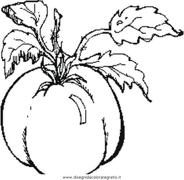 alimenti/verdura/tomato_pomodoro.JPG