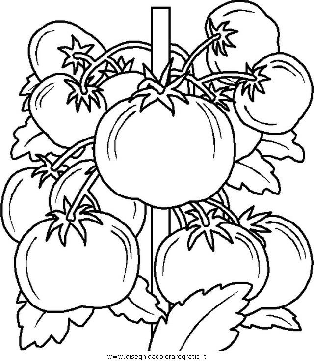alimenti/verdura/verdura_34.JPG
