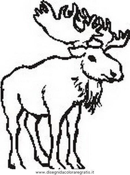 animali/animalimisti/alce.JPG