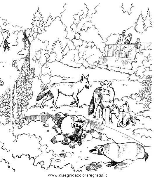 animali/animalimisti/animali_misti_016.JPG