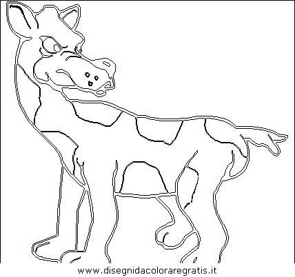 animali/animalimisti/animali_misti_115.JPG