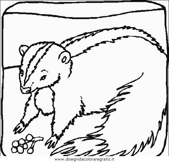 animali/animalimisti/animali_misti_186.JPG