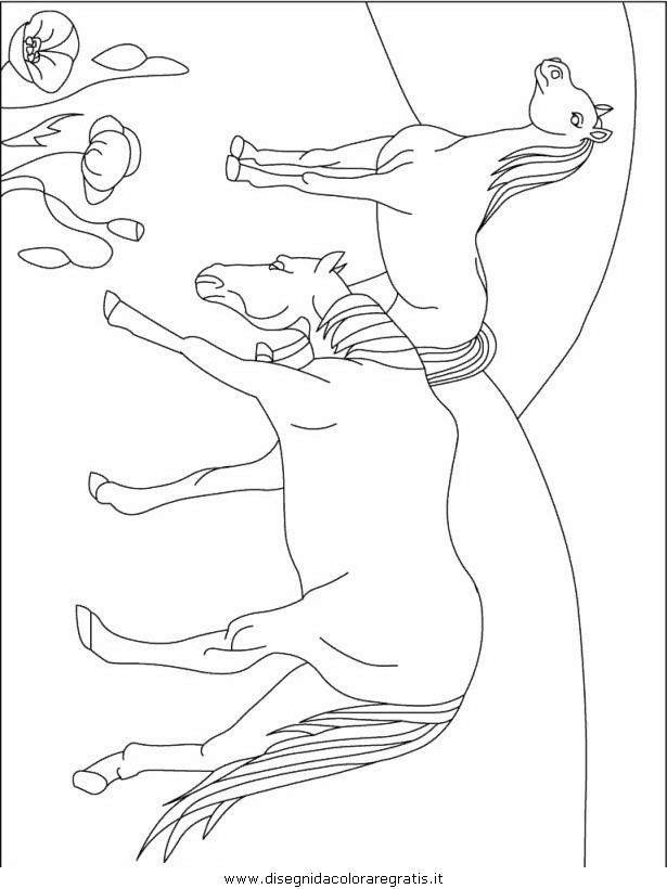 animali/animalimisti/animali_misti_242.JPG