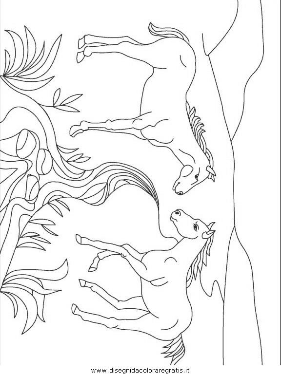 animali/animalimisti/animali_misti_243.JPG