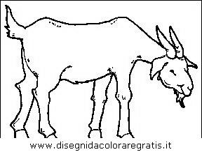 Disegno capra animali da colorare - Immagini da colorare capra ...