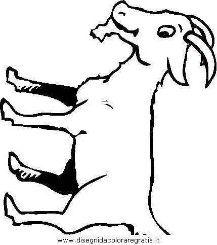 animali/animalimisti/capra44.JPG