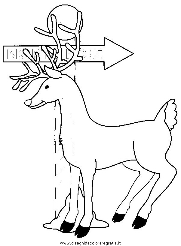 animali/animalimisti/cervo3.JPG
