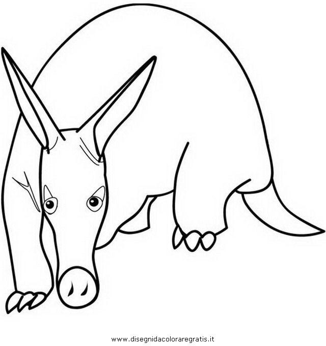 animali/animalimisti/oritteropo.JPG