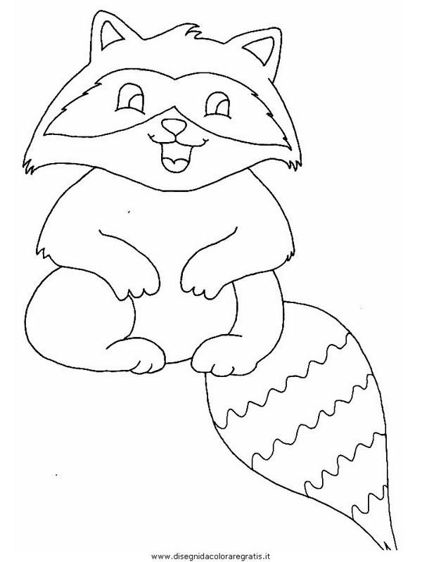 animali/animalimisti/raccoon_resize.JPG