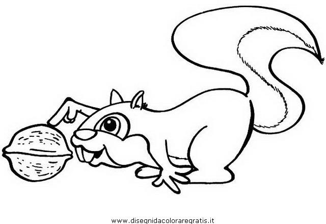 animali/animalimisti/scoiattolo_scoiattoli.JPG