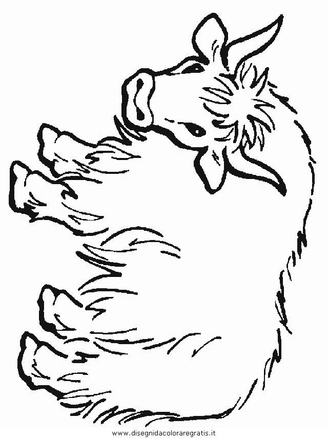 animali/animalimisti/yak.JPG