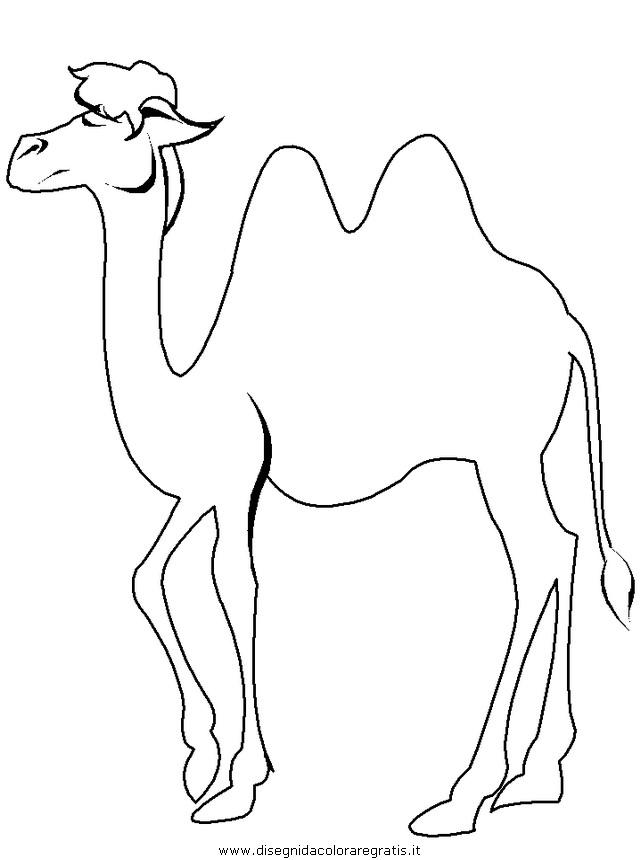 Disegno cammelli cammello 04 animali da colorare - Immagini di orsi da colorare in ...