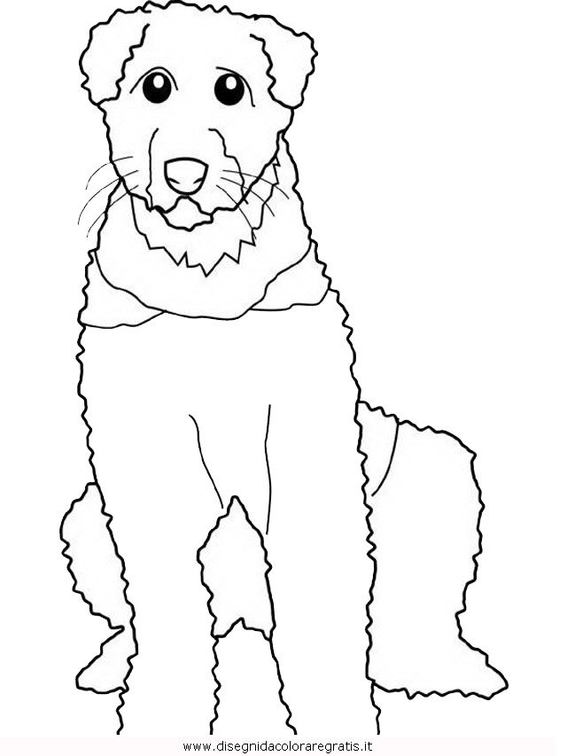 animali/cani/airedale.JPG