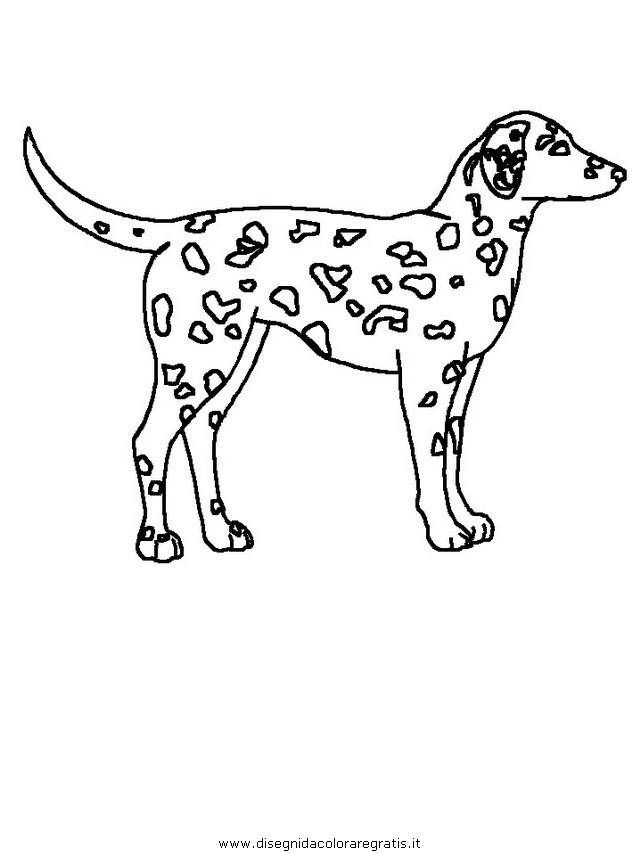 animali/cani/cane_007.JPG