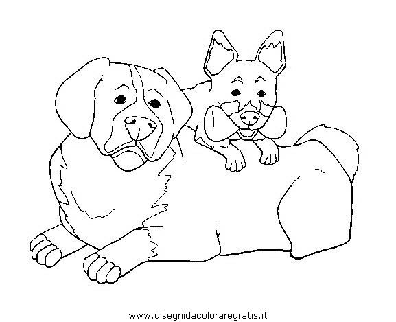 animali/cani/cane_031.JPG