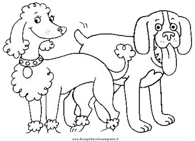 animali/cani/cane_035.JPG