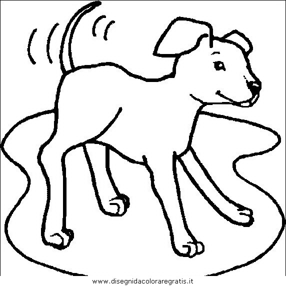 animali/cani/cane_043.JPG