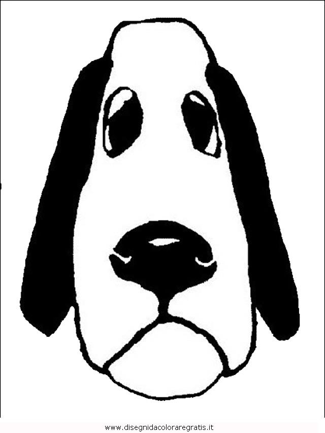 animali/cani/cane_050.JPG