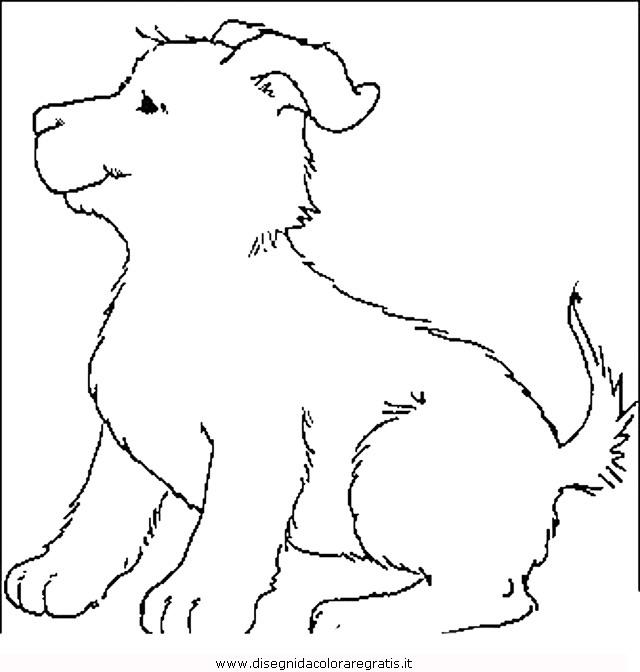 animali/cani/cane_053.JPG