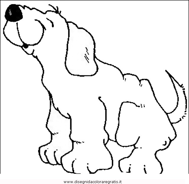 animali/cani/cane_054.JPG