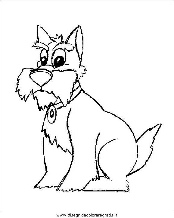 animali/cani/cane_066.JPG