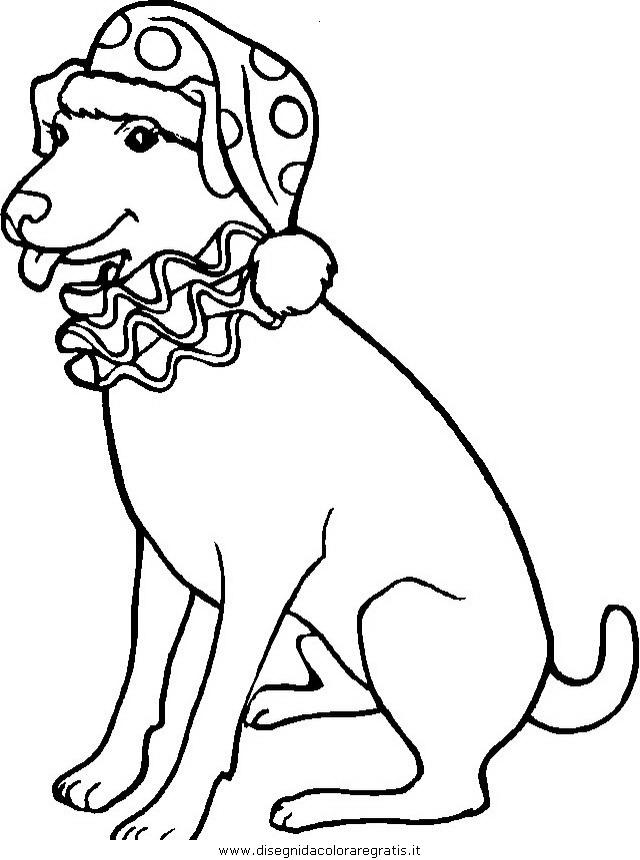animali/cani/cane_082.JPG