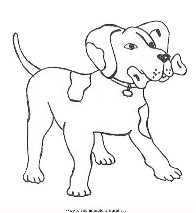animali/cani/cane_085.JPG