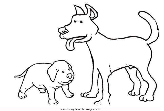 animali/cani/cane_095.JPG