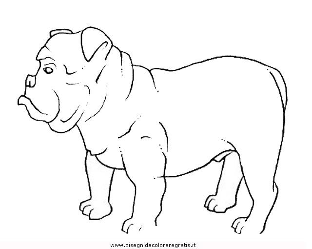 animali/cani/cane_098.JPG