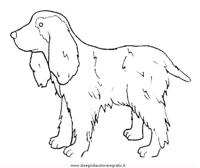 animali/cani/cane_102.JPG