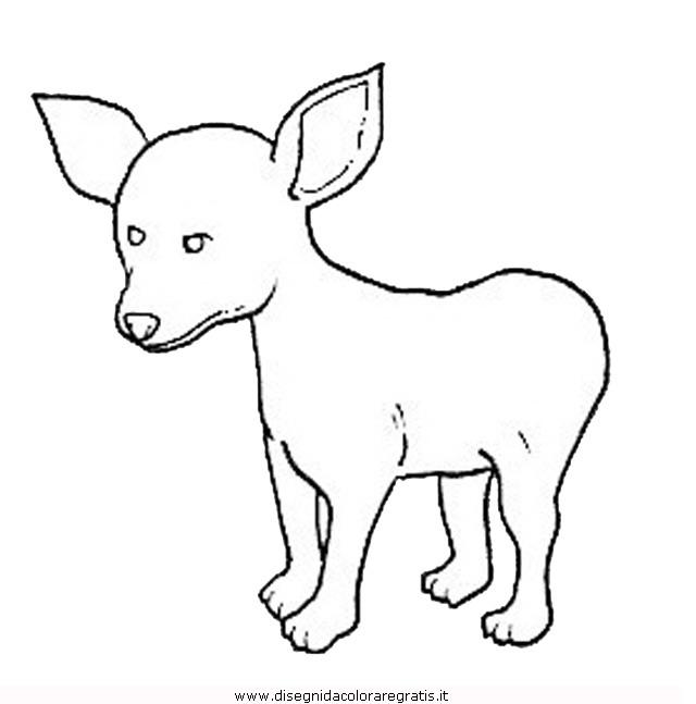animali/cani/cane_104.JPG