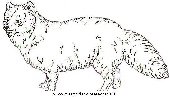 animali/cani/cani_a8.JPG