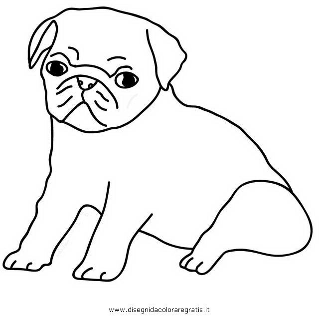 animali/cani/carlini_carlino.JPG
