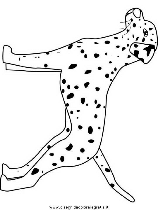 animali/cani/dalmatian.JPG