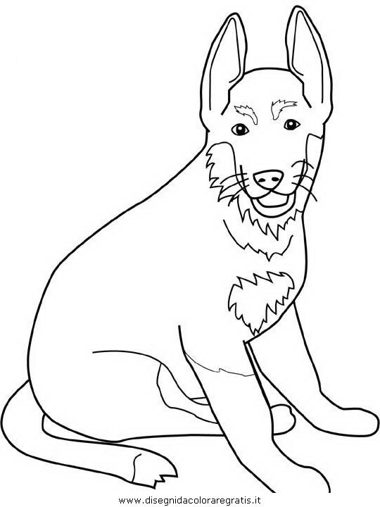 Disegno german shepherd personaggio cartone animato da