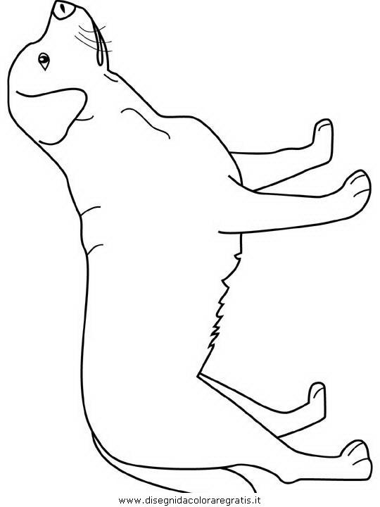 Disegno labrador animali da colorare for Cane disegno facile