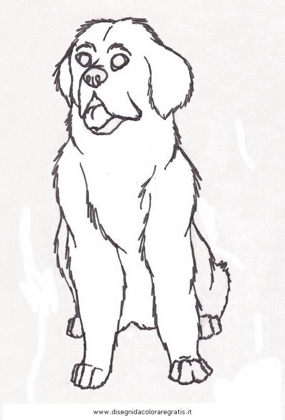 animali/cani/terranova_1.JPG